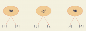 Shows the allophonic distributions for /g/, /b/, and /d/ sounds.